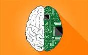 Doanh nghiệp của bạn có được chuẩn bị tốt cho AI không?
