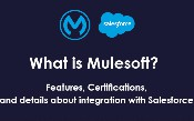 Mulesoft là gì? Các tính năng, chứng chỉ và tích hợp với lực lượng bán hàng