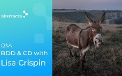 Hỏi và Đáp Với Lisa Crispin: Phát triển theo hướng hành vi và liên tục ...