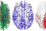 Mạng nơ ron nhân tạo: Một số quan niệm sai lầm (Phần 1)