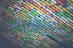 Có phải AI tự động mã hóa là kỷ nguyên tiếp theo của lập trình?
