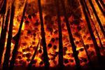 Hình thức địa ngục nằm ngay bên ngoài tường lửa doanh nghiệp
