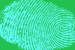 Sử dụng AI để tự động kiểm tra dấu vân tay