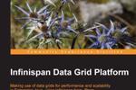 Infinispan - Nền tảng lưới dữ liệu