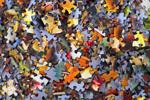 Cách chọn thuật toán ML phù hợp