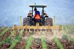 Làm thế nào một người nông dân xây dựng một trang trại dựa trên IoT