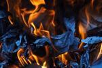 Khám phá cách CSS của một trang web hoạt động bằng cách sử dụng Fireorms [Video]
