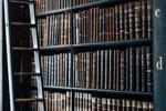 10 thư viện phản ứng hàng đầu trên GitHub để theo dõi